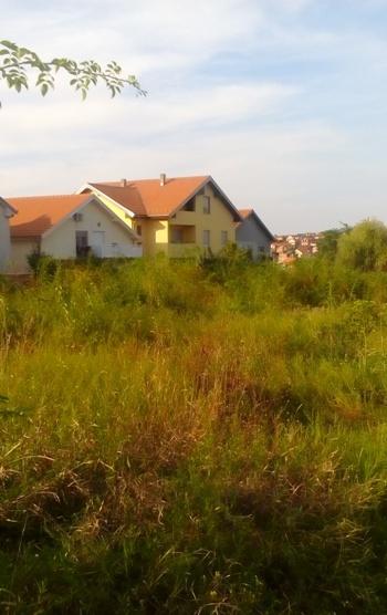 Rakovica Miljakovac Iii 3000m2 360000e