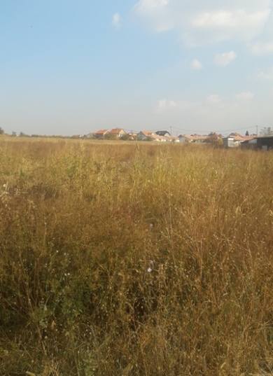 Plac , Cukarica , Beograd (grad) , Prodaja | Cukarica Ostruznica 1000M2 10A 22000E