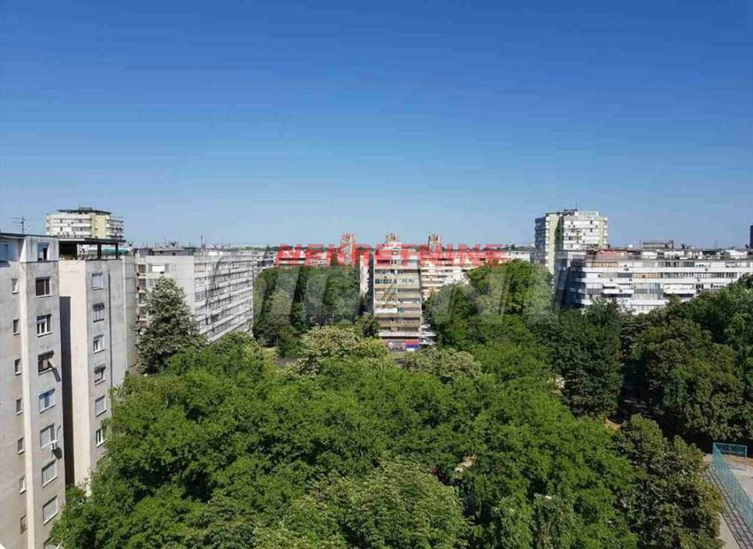 Novi Beograd OpŠtina Nbgd 20m2 38900e