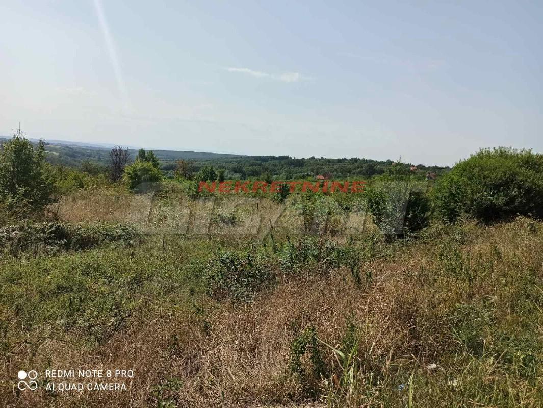 BARAJEVO-ŠILJAKOVAC, 557 ARI