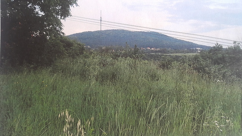 Rakovica Avala 9000m2 325500e