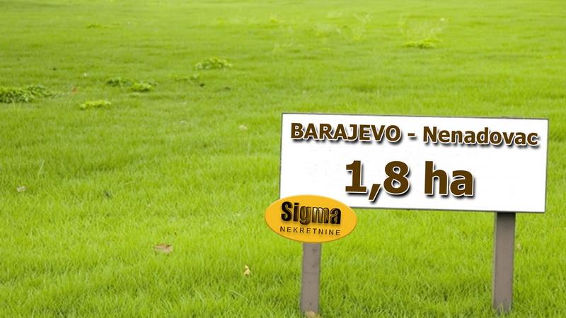 Plac Veliki Nenadovac barajevo Barajevo 18500m2 43000e